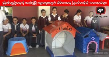 စွန့်ပစ်ပစ္စည်းတွေကို အသုံးပြုပြီး ခွေးတွေအတွက် အိမ်လေးတွေ ပြုလုပ်ပေးခဲ့တဲ့ ကလေးငယ်များ