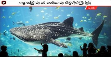 ကမ္ဘာ့အကြီးဆုံးနှင့်အခမ်းနားဆုံး ငါးပြတိုက်ကြီး (၅) ခု